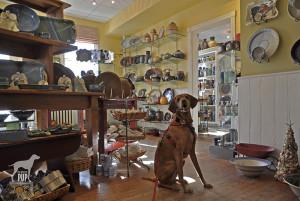 Tavish at Annapolis Pottery