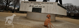 Mary McLeod Bethune statue