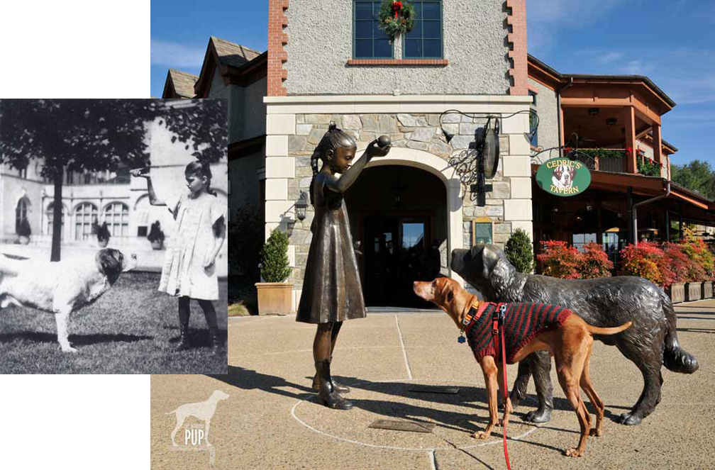 The Biltmore's dog-friendly legacy