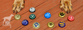 Tavish with dog-based brewing companies' bottle caps