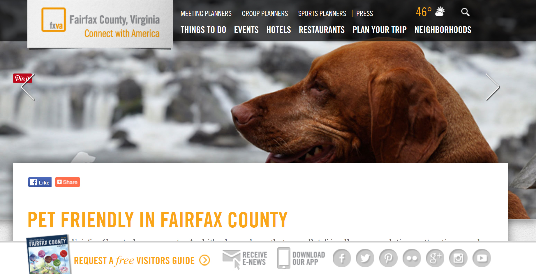 "Tavish as ""poster dog"" for Visit Fairfax"
