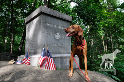 Gettysburg_20thMaine