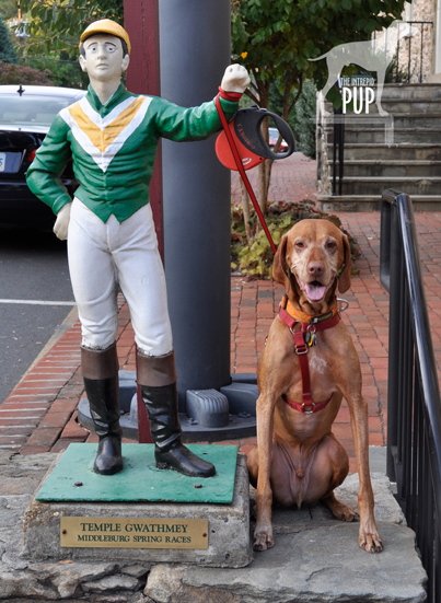 Hunt Country lawn jockey