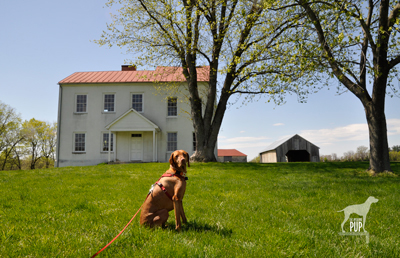 Tavish at Best Farm, Monocacy National Battlefield