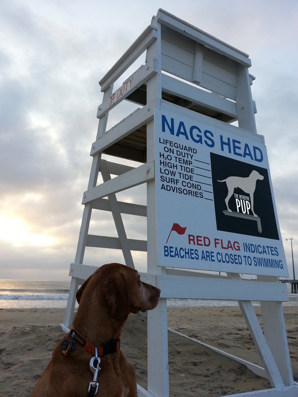 NagsHeadBeach