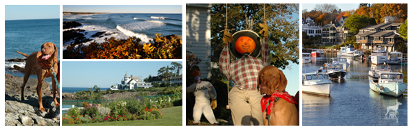 Montage of Ogunquit
