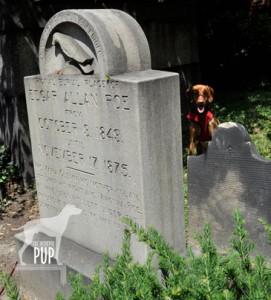 Poe gravesite
