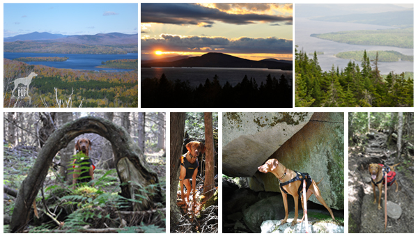 Montage of Rangeley Lakes