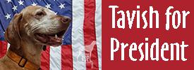 Tavish for President