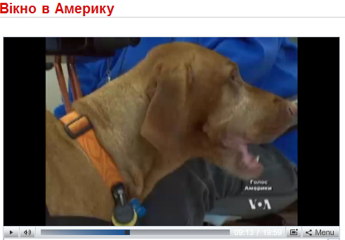 "Click to see Tavish in ""Window on America"" Ukrainian news segment"