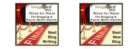 BlogPaws Finalist Badges