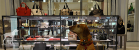 Retail Hound Tavish
