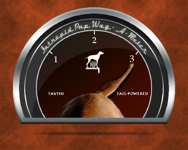 Click to see what a 3 on the Wag-A-Meter means